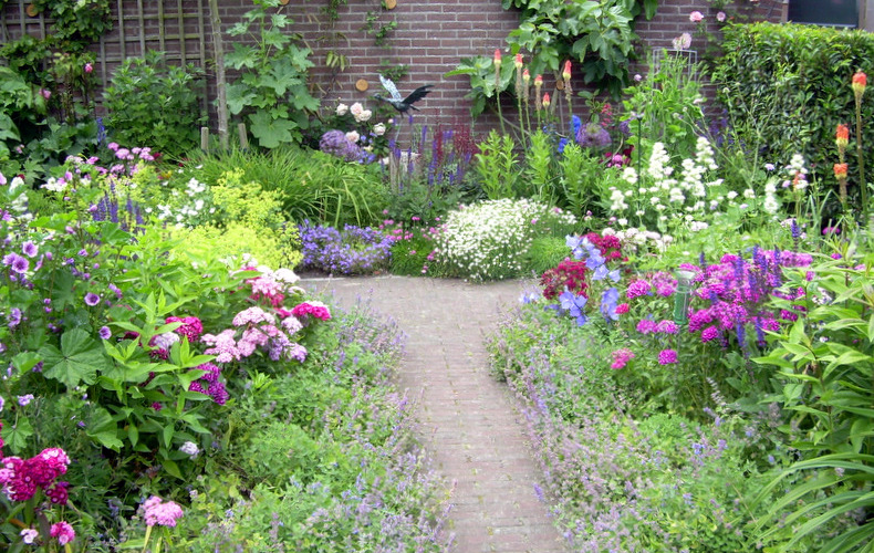 Adrienne albrecht tuinontwerpen for Tuin beplanten